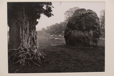Paul Caponigro, 'Stone and Tree, Avebury, England', 1967