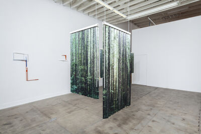 Tanya Brodsky, 'A wide and view of a dense forest in British Colombia/ Fresh raw meat ', 2019