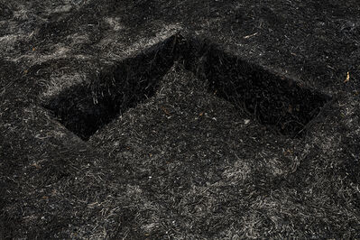 José Luis Cuevas (fotógrafo), 'Nueva Era | New Era S/T (Ground)', 2009-2014