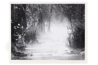 David H. Gibson, 'November Morning, Cypress Creek, Wimberley, Texas', 1992