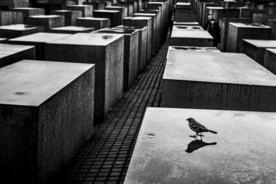 Ziv Koren, 'Berlin, Germany May 2013 - The Memorial to the Murdered Jews of Europe, 2,711 concrete slabs arranged in a grid pattern on a sloping field.', 2013
