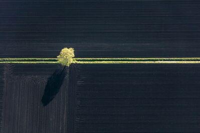 Klaus Leidorf, 'Yellow stripe', 2015