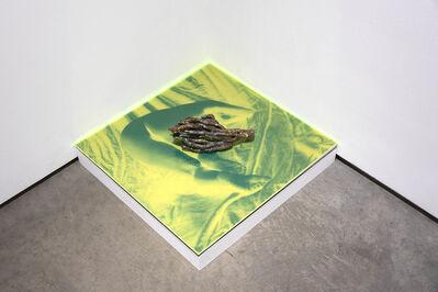Esther Teichmann, 'Sirensong', 2019