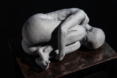 Peter Simon Mühlhäußer, 'The Insilence', 2014