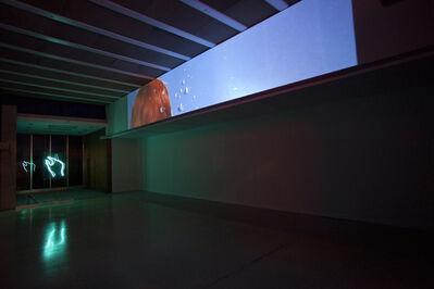 Victoria Fu, 'Velvet Peel 1', 2015
