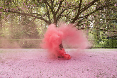 Isabelle & Alexis, 'Sceaux - Cherry Blossom tree giving birth to a pink cloud', 2014