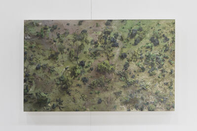 Amy Bennett, 'Forest Floor', 2010