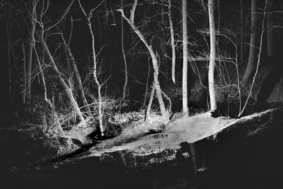 Michael Borowski, 'Through the Swift, Black Night 01', 2019