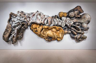 Henrique Oliveira, 'Adenocalcinoma Poliresidual', 2014