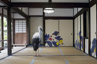 Karen Knorr, 'Victory of the Spirit ,Sho-ren in Temple, Kyoto  ', 2015