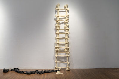 Gil Yefman, 'Ladder of Bones', 2010