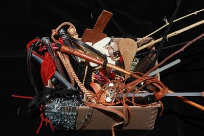 Virginia de Medeiros, 'SM tool box - Garden of Tortures', 2012-2014