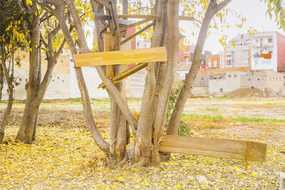 Ricardo Cases, 'El porque de las naranjas', 2014