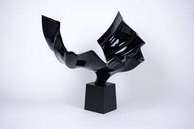 TAKESHI IGAWA, 'Wings of Waves', 2016