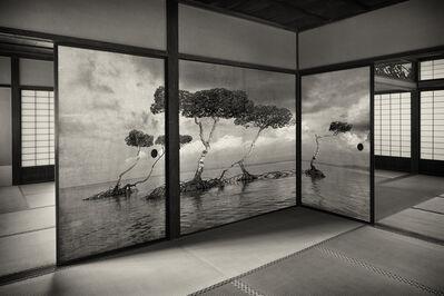 Kenji Wakasugi, 'Mangrove', 2016