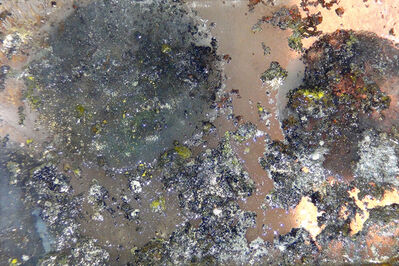Nitin Mukul, 'Crater (Still II) (Ed. of 5 + AP)', 2014