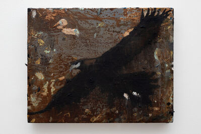 Richard Lewer, 'Wedge-tailed eagle', 2020