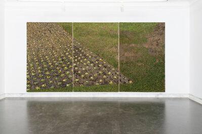 Oliver Westerbarkey, 'EntropiaPark/Beet ext', 2016/2018