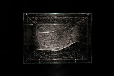 Tomás Saraceno, 'Hybrid semi-social Instrument HIP 31681 built by:  a triplet of Cyrtophora citricola - two weeks, rotated 180°', 2019