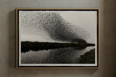 Søren Solkær, 'Black Sun', 2019