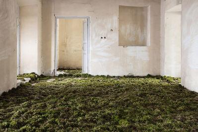 Gohar Dashti, 'Home 2', 2017