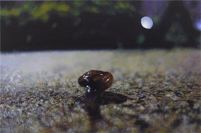 Chia-Ning Huang, 'Little Snail', 2016
