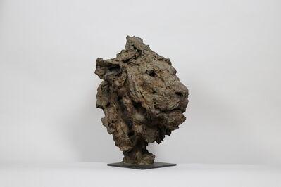 Patrick Villas, 'Tête de lion', 2013
