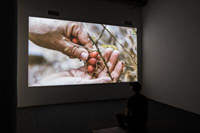 Cecilia Vicuña, 'Semiya (Seed  Song)', 2015