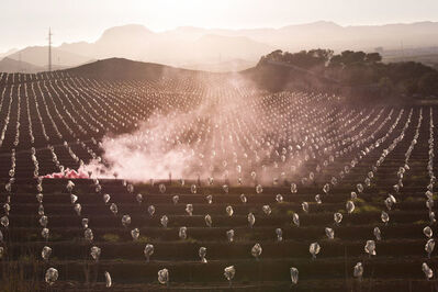 Isabelle & Alexis, 'Murcia - Evaporation of cotton candy over a field in Spain.', 2015