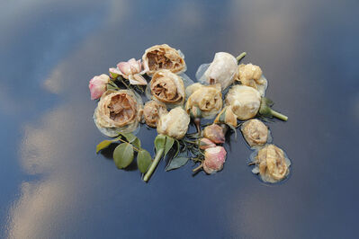 Mary Kocol, 'Roses, Table, Sky, (from the Ghost Garden Series)', 2014