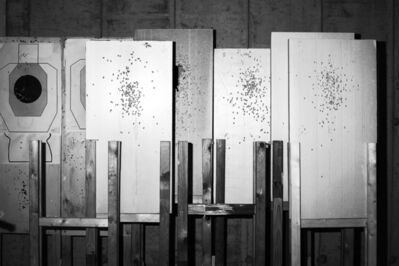The Cool Couple, 'Shooting Range (Execution), Tolmezzo #003', 2016