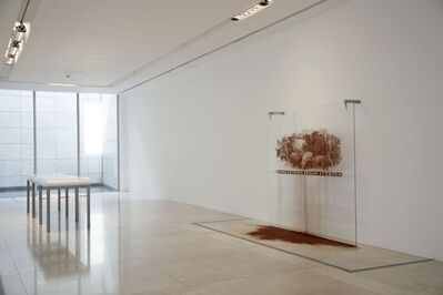 Cristina Piffer, 'Doscientos pesos fuertes', 2010