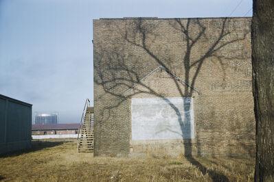 Werner Bischof, 'A tree's shadow, Georgia, USA', 1953