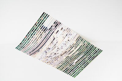 Andrea Acosta, 'Scores for a Transforming Landscape - Between Forests', 2019