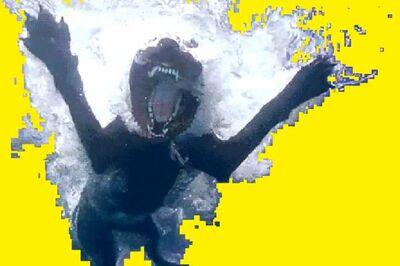 Lorna Mills, 'Dog Piss Swim', 2015