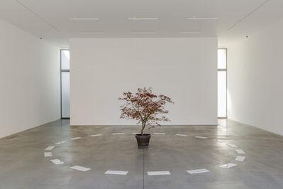 David Lamelas, 'Segnalamento', 2014