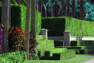 Robert Funk, 'Hedge Fun - Billionaires Row, Palm Beach - Street Art by the Wealthy', 2021