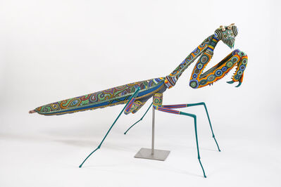 "Jan Huling, '""Das Bug""', ca. 2017"