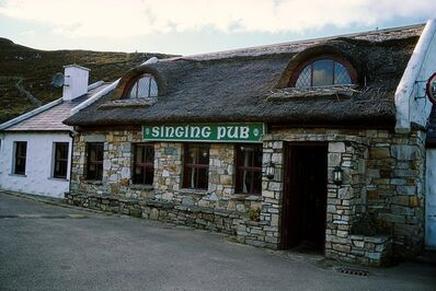 "Nan Goldin, '""THE SINGING PUB""', 2002"