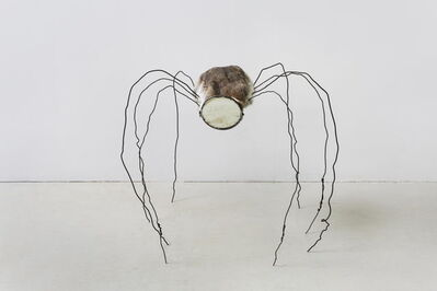 Fu Xiaotong, 'Mirrored Spider 镜面蜘蛛', 2017