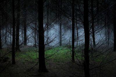Ellie Davies, 'Between the Trees 8', 2014