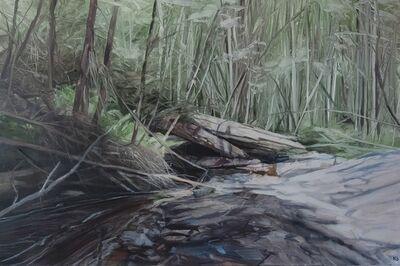 Nicholas Blowers, 'Savage Pond VII Study', 2018