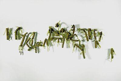 Lai Dieu Ha, 'Hydra Magnipapillata...', 2015