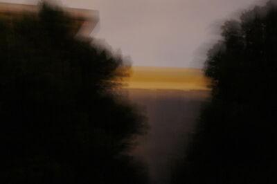 Kang Haitao 康海涛, 'Tree 1 树1', 2017