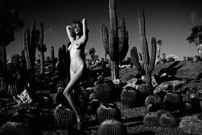 Kate Bellm, 'Cactus Land, Majorca', 2014