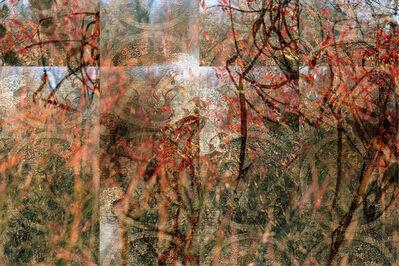 Lori Van Houten, 'Stained Silk (Red Flurry)', 2004