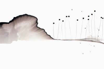 Jean Christophe De Clercq, 'Untitled 9', 2011