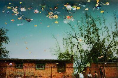 Han Bing, 'Fallen Leaves, Polluted Water, Street Walkers and Johns', 2005
