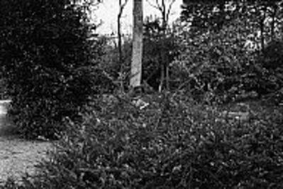 Richard Kalvar, 'Bois de Boulogne, Paris', 1979