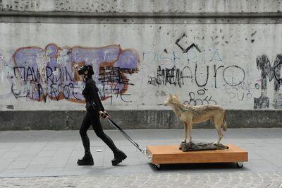 María José Arjona, 'On Images & Narratives, Woman & wolf  | Sobre imágenes & narrativas, Mujer y Lobo', 2010